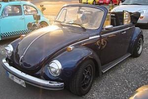 000_bug-17-300x200
