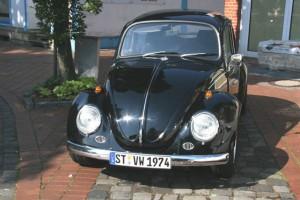 000_bug-7-300x200